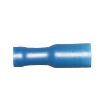 bullet female