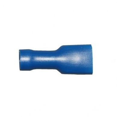 spade female